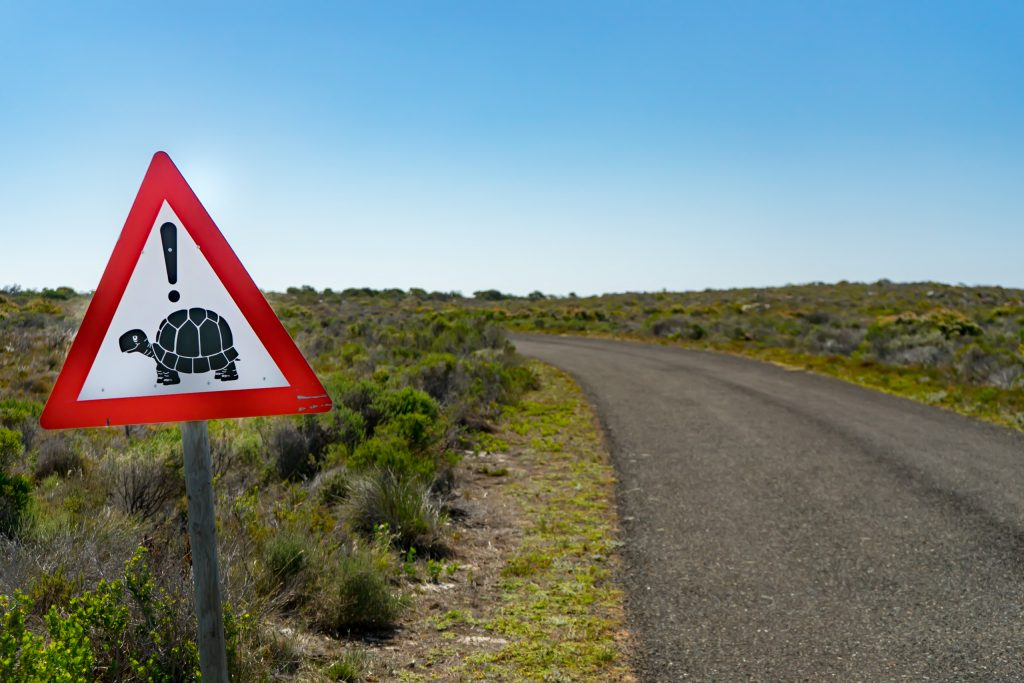 Traffic sign at Cape Point National Park House sitting in South Africa