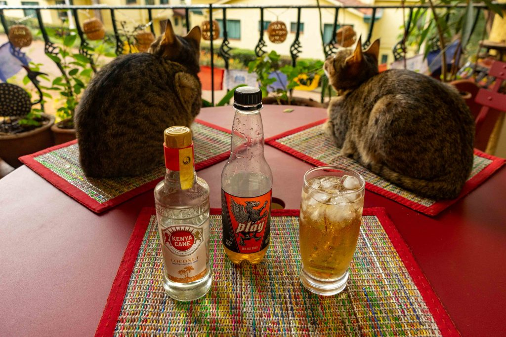 happy hour, rum, energy drink, cats, house sitting, Nairobi, Kenya, Africa